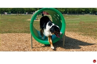 Picture of Bark Park Doggie Crawl, Outdoor Dog Exercise