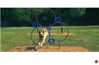 Picture of Bark Park Hoop Jump, Outdoor Dog Exercise
